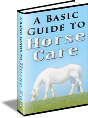 Product picture A Basic Guide to Horse Care